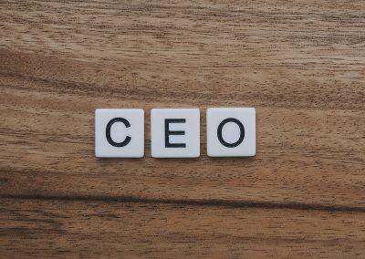 Sample Agenda for Regular CEO/Board Chair Meeting